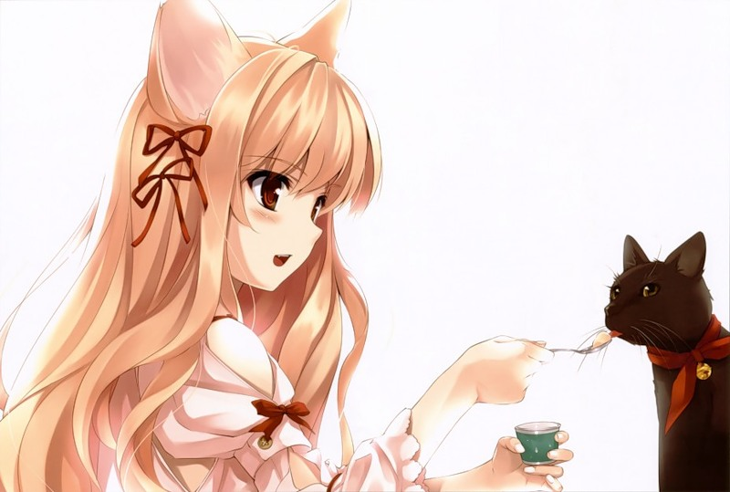 Девушка и кошка.Аниме картинки