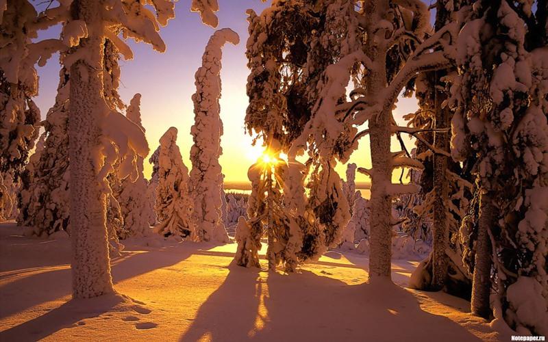 Картинка Зимняя сказка из коллекции Обои для рабочего стола Природа