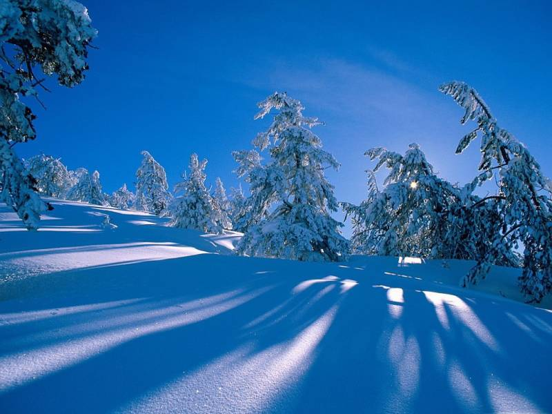 Зимний пейзаж на рабочий стол.Природа