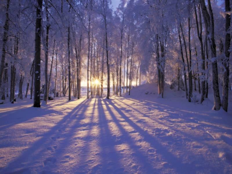 Зимний пейзаж обои - Природа