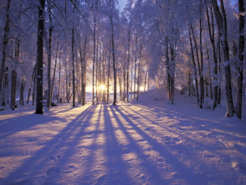 Зимний пейзаж обои.Природа