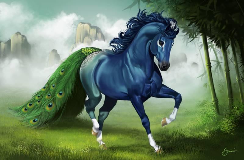Картинка Красивая лошадь из коллекции Обои для рабочего стола Животный мир