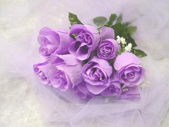 Букет роз - Цветы