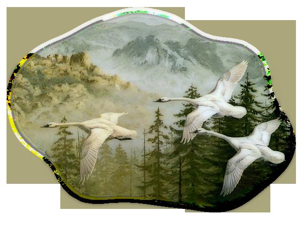 Картинка Лебеди летят из коллекции Обои для рабочего стола Птицы