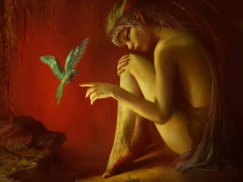 Картинка Девочка с райской птичкой из коллекции Обои для рабочего стола Фэнтези