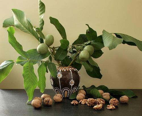 Ореховый спас!.Открытки к праздникам